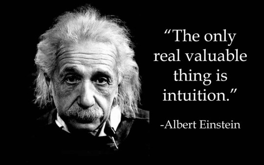 einstein-valuable-540x338